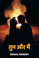 Rahul Pandey द्वारा लिखित  तुम और मैं - 1 बुक Hindi में प्रकाशित