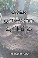 കാലം ഉണക്കാത്ത മുറിവ് കൾ by Sarangirethick in Malayalam