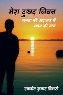 मेरा दुखद जिवन - जनता की अदालत में न्याय की मांग by रनजीत कुमार तिवारी in Hindi