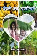 केले का बगीचा by Anil jaiswal in Hindi