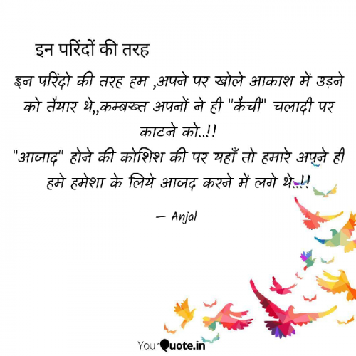 Post by Anjal on 21-Feb-2019 07:22am