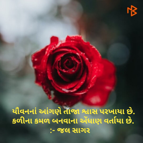Post by Sagar Jal on 21-Mar-2019 10:01am