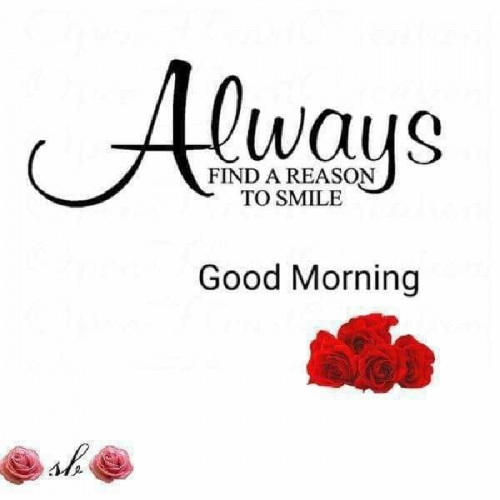 English Good Morning status by Angelgirlaaliya on 22-May-2019 04:38:01am | Matrubharti