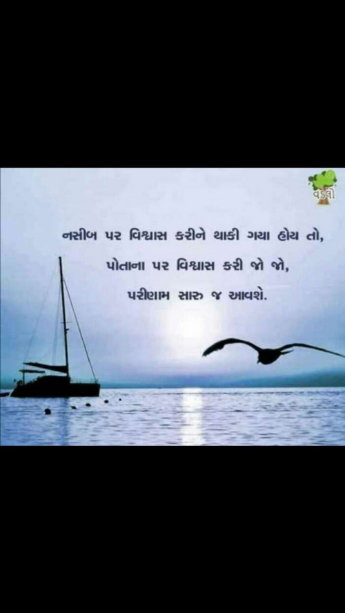 Post by NIRALI CHAVDA on 23-May-2019 01:43pm