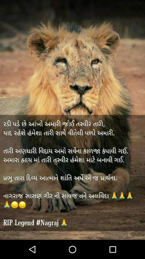 Post by Nayan Rajput on 23-May-2019 04:16pm