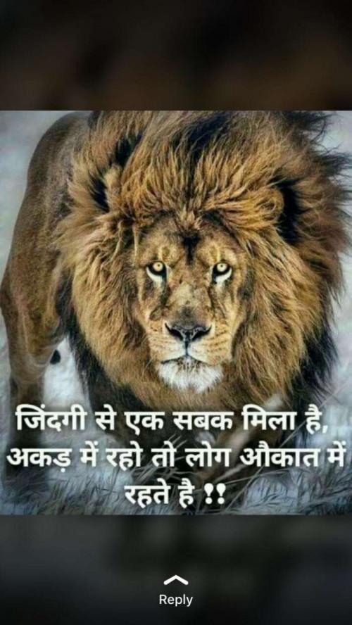 Gujarati Whatsapp Status Status By Sikandar On 02 Jun 2019