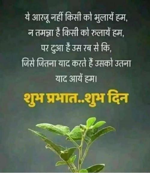 Post by Vinu M Patel on 29-Jun-2019 08:48am