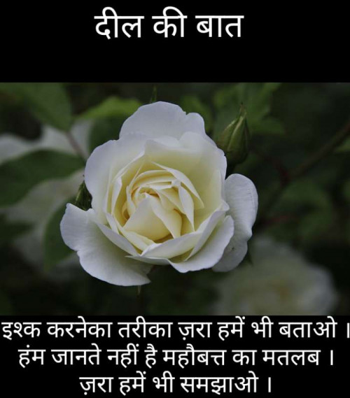 Post by Narendra Parmar on 23-Jul-2019 11:43pm