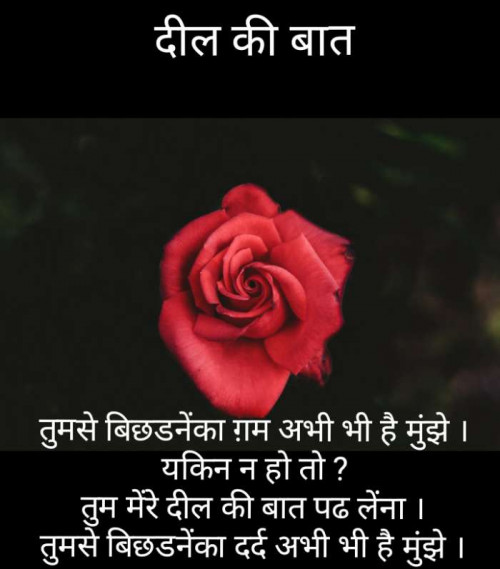 Post by Narendra Parmar on 30-Jul-2019 10:28pm