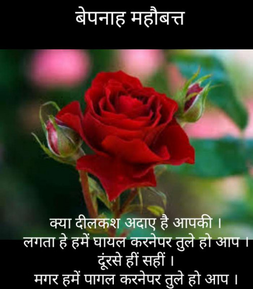 Post by Narendra Parmar on 30-Jul-2019 10:35pm