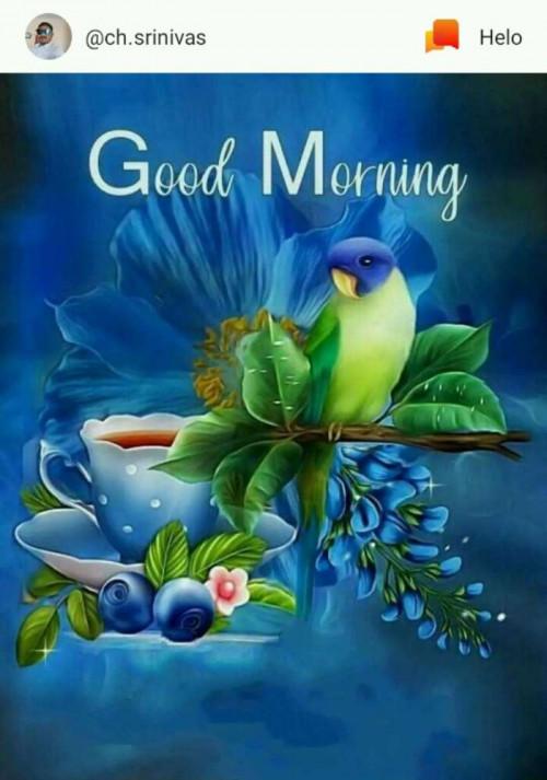 Marathi Good Morning status by Machhindra Mali on 06-Aug-2019 07:33am | matrubharti