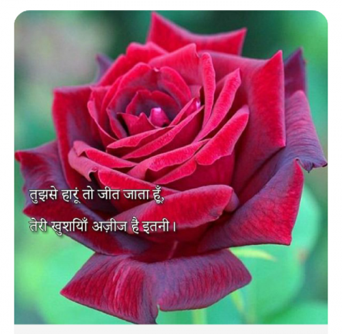 Post by Anandi on 07-Aug-2019 07:02pm