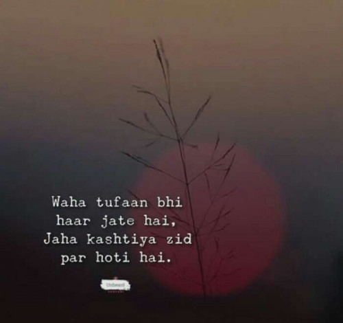 Post by Jinal on 07-Aug-2019 11:28pm