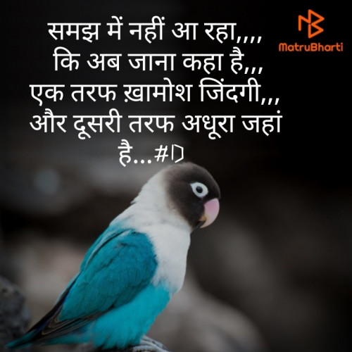 Post by Deepak Singh on 13-Aug-2019 12:22am