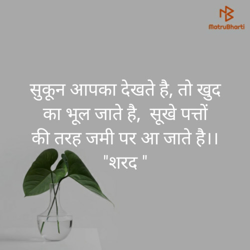Post by Sharad Maloo on 17-Aug-2019 03:28pm