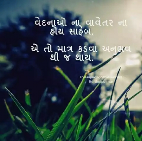 Post by Naresh Parmar on 18-Aug-2019 09:39am