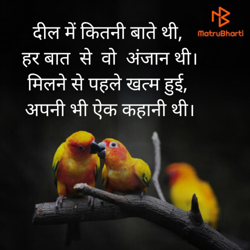 Post by Nilaxi Patel on 18-Aug-2019 03:04pm