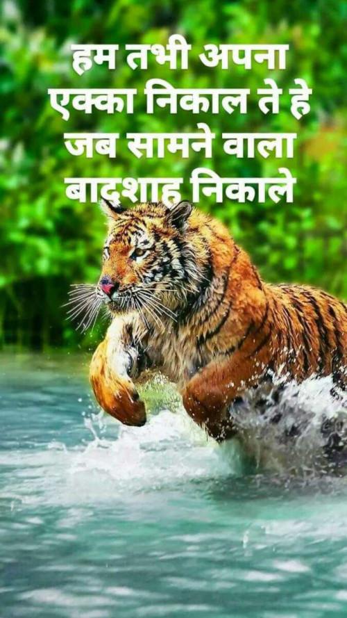 Post by Ritu Thakar on 18-Aug-2019 07:02pm