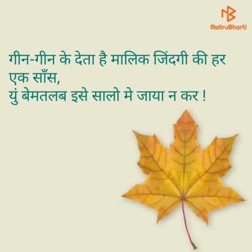 Post by Hitesh Rathod on 18-Aug-2019 08:00pm