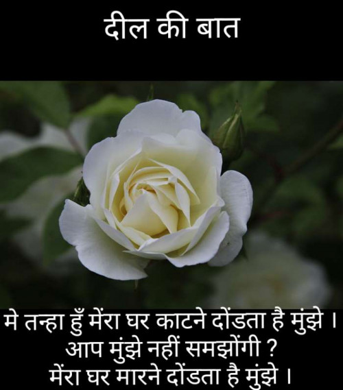 Post by Narendra Parmar on 20-Aug-2019 07:17am