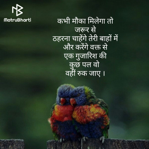 Hindi Romance status by priya soni on 20-Aug-2019 07:09pm | Matrubharti