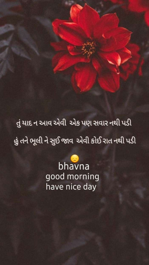 Post by Bhavna Parmar on 22-Aug-2019 07:20am