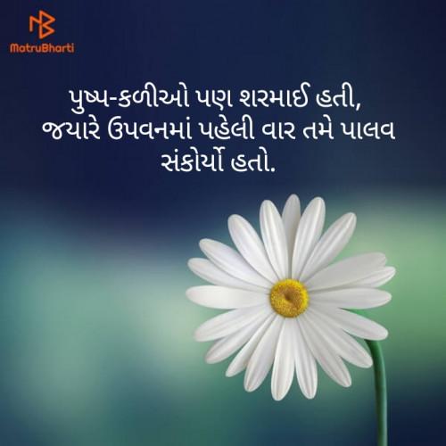 Gujarati Blog status by Hitesh Rathod on 14-Aug-2019 09:51:43am | Matrubharti