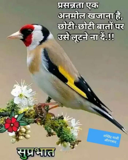 Post by Machhindra Mali on 24-Aug-2019 10:19am