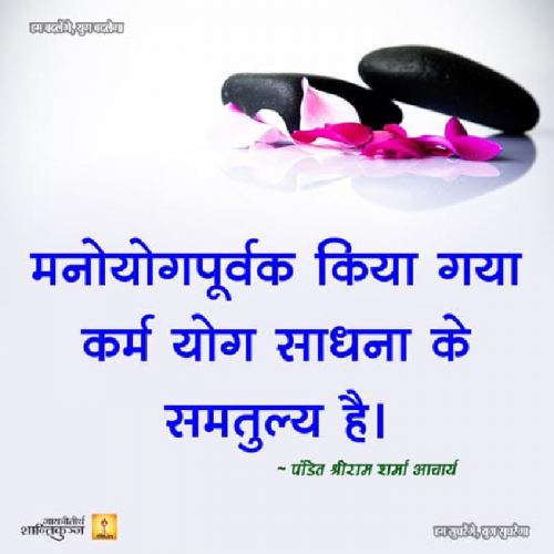 Post by Zalak bhatt on 27-Aug-2019 07:09pm