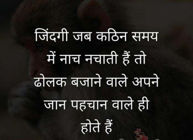 Post by Dhruvi on 04-Sep-2019 09:18pm