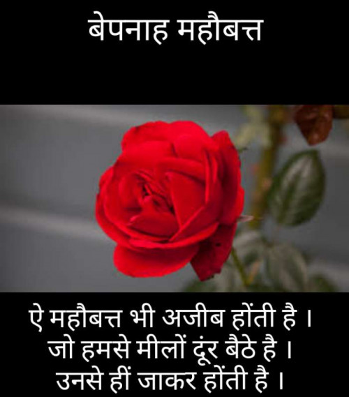 Post by Narendra Parmar on 06-Sep-2019 11:11pm