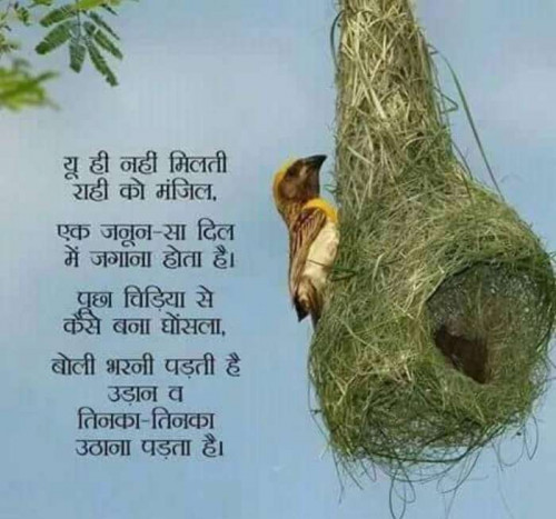 Post by Mukesh Shah on 07-Sep-2019 05:44am