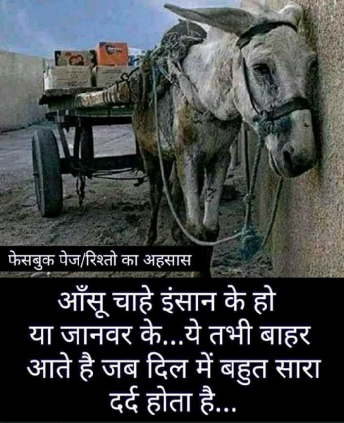 Post by Hero on 07-Sep-2019 07:10am