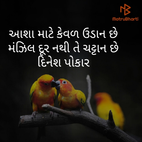 Post by Dinesh Patel on 08-Sep-2019 08:57am