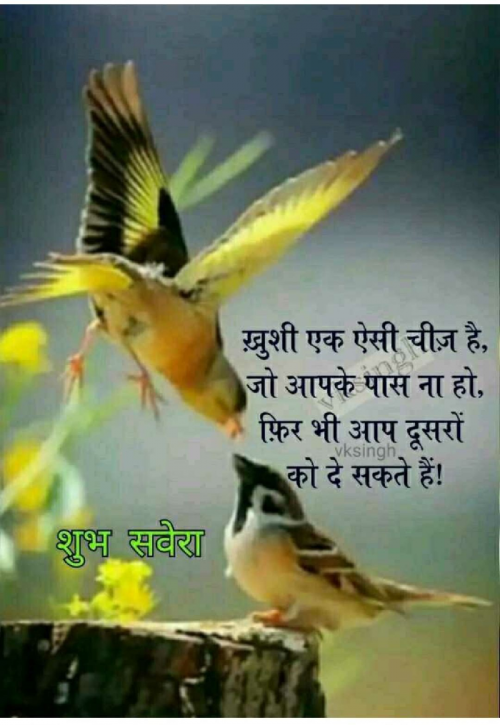Post by Harsh Parmar on 10-Sep-2019 08:25am