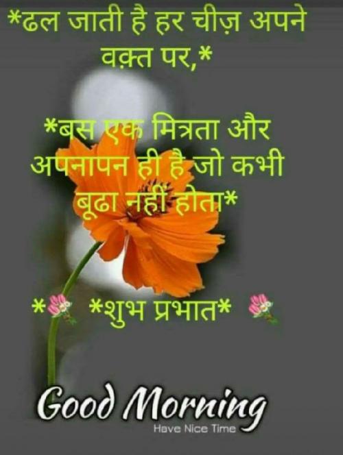Post by Piyaali on 14-Sep-2019 07:57am