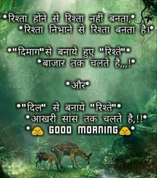 Post by Mehul Kumar on 15-Sep-2019 02:34am