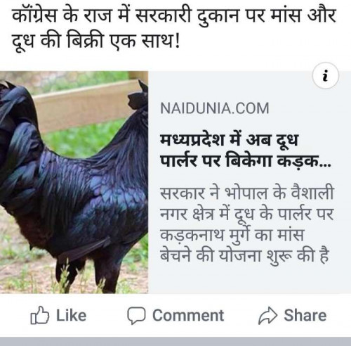 Post by Jigs Hindustani on 15-Sep-2019 03:17pm