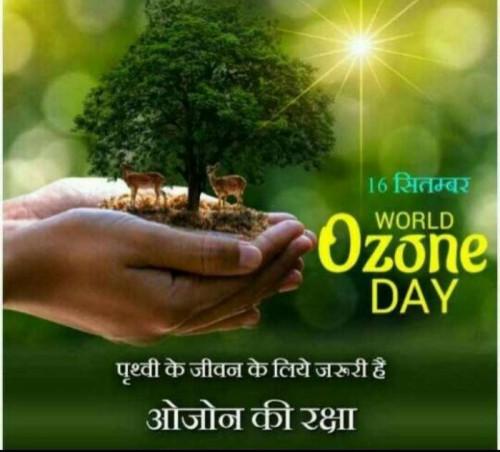 Post by Deepak Singh on 16-Sep-2019 07:16am