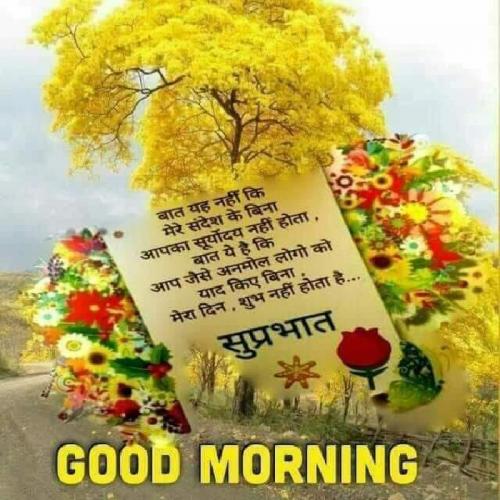 Post by Piyaali on 16-Sep-2019 07:47am