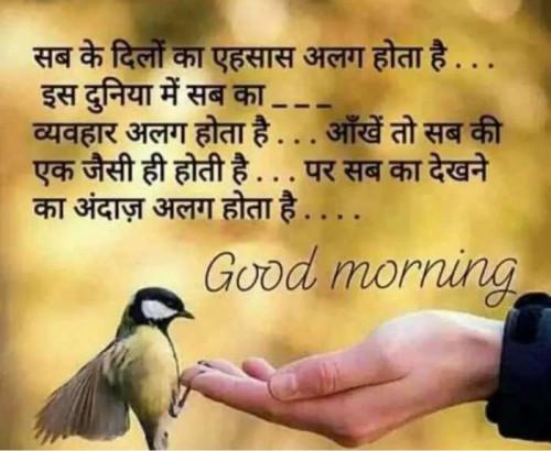 Post by Mehul Kumar on 17-Sep-2019 04:25am
