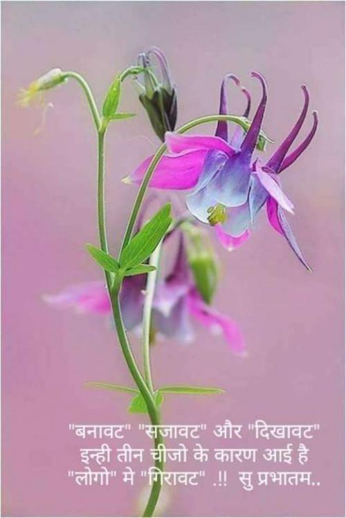 Post by Kalpesh Joshi on 17-Sep-2019 07:16am