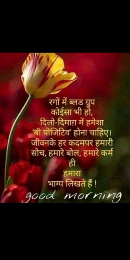 Post by Heema Joshi on 17-Sep-2019 08:17am
