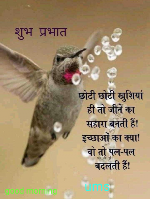 Post by Parag Thummar on 18-Sep-2019 12:38pm