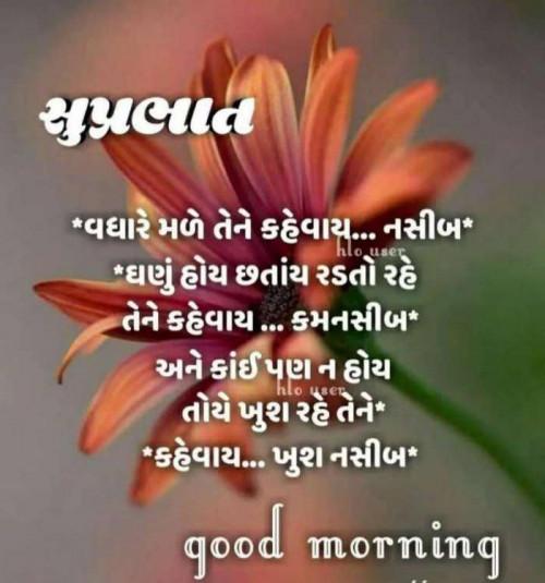 Post by Mehul Kumar on 20-Sep-2019 03:33am
