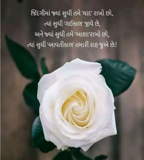 Post by Anil Ramavat on 21-Sep-2019 08:05am