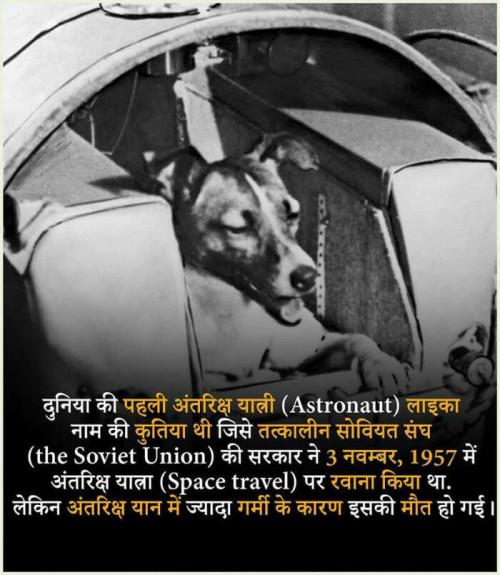 Post by Vavadiya L.B. on 21-Sep-2019 11:20am