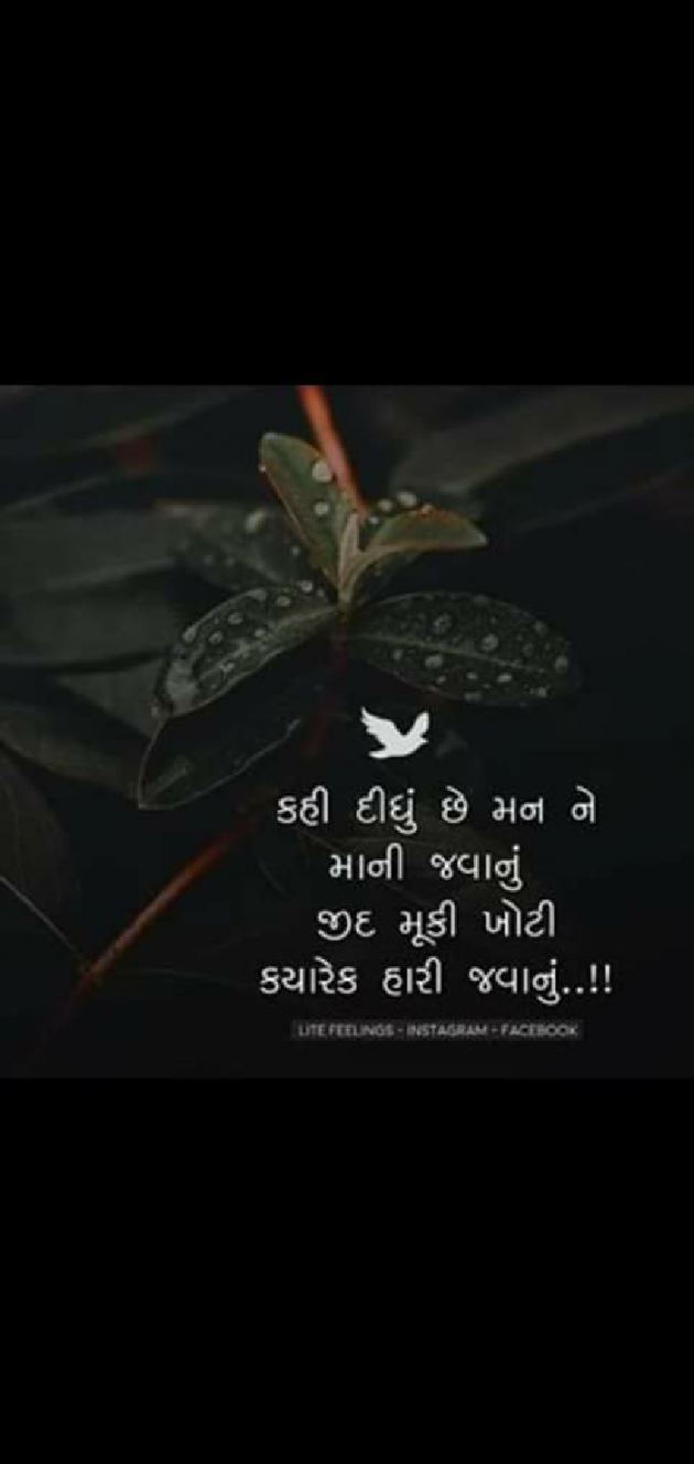 Post by Aarti on 28-Sep-2019 11:41pm