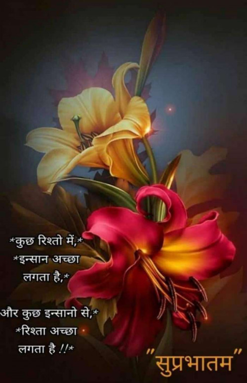 Quotes, Poems and Stories by kashyapj joshij | Matrubharti