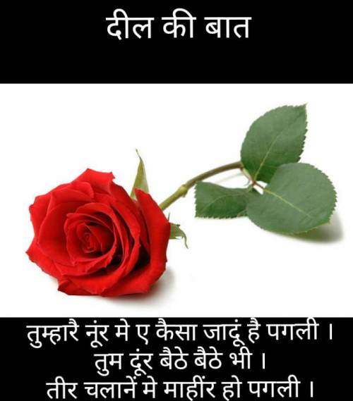 Post by Narendra Parmar on 09-Oct-2019 12:56pm